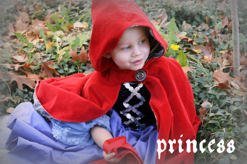 Reform princess