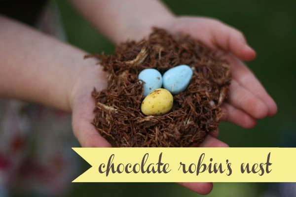 Chocolate robin's nest
